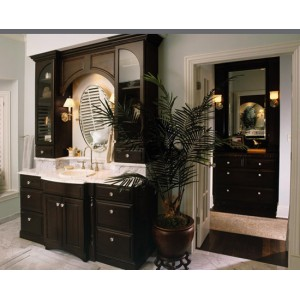 Leclaire Square bath, Omega Cabinetry