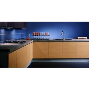 Trendy Wood kitchen, Aster Cucine